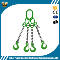 Two legs Chain rigging/Double feet lifting chain sling with hook/lifting link chain equipment tools
