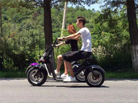 Fashion Citycoco Harley scooter 2 wheels Electric Motorcycle New products 2016 electric motorcycle