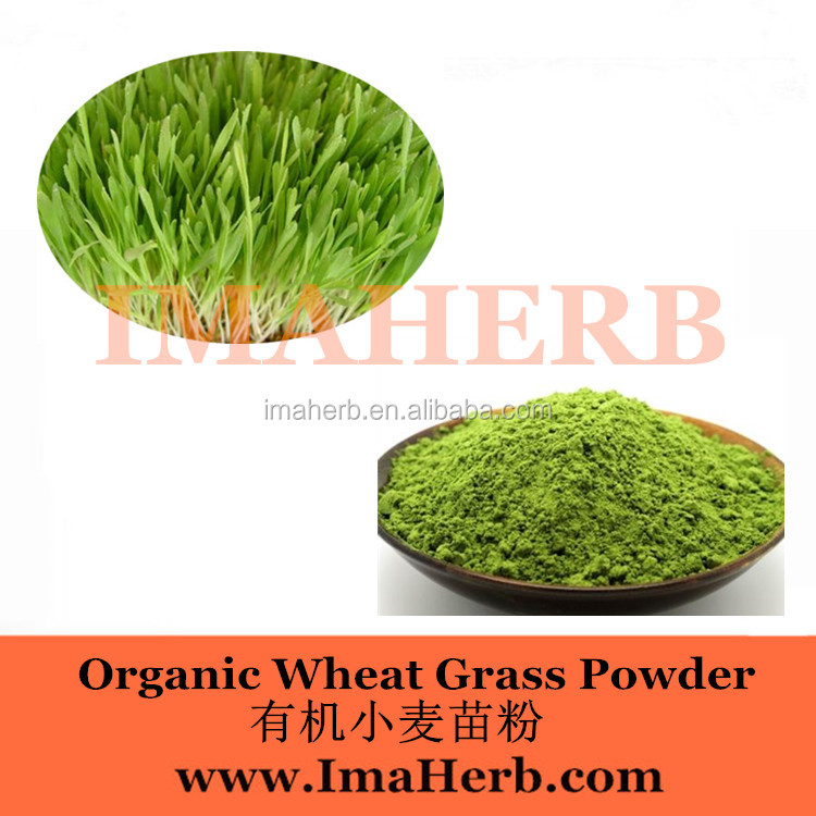 Made in China Organic best wheatgrass powder for bio energy drink