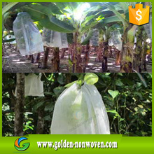 Eco-friendly fruit protect bag non woven fabric,BANANA,GRAPE,STRAWBERRY,MANGO protect bag