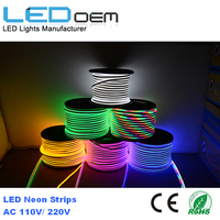 100m Roll 220V Led Neon Flex