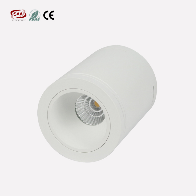 3 inch 9W Surface Mounted Decorative Cylinder LED COB Downlight