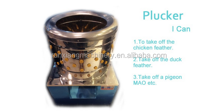 High efficiency and electricity saving of the chicken plucker machine / plucking machine