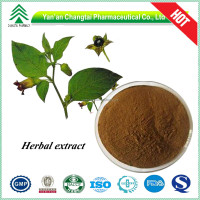 Best price Brown Powder 100% Natural Belladonna Extract Hyoscyamine