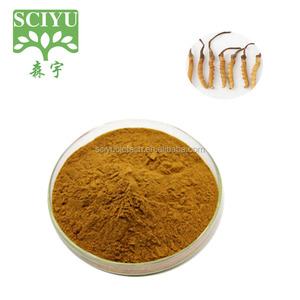 Hot sale Yarsagumba Extract 30%Polysaccharides Yarsagumba Extract powder