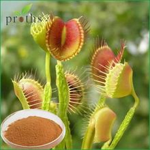 Famous suppliers healthy Venus's flytrap Extract