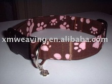leather Dog collar & leasehs