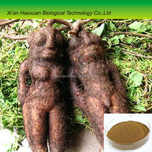 Herbal medicine tuber fleeceflower roots p.e. all ratio 20:1 he shou wu extract