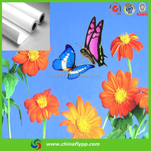 Eco-solvent PP paper, Semi-glossy pp paper, advertising pp paper