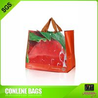outdoor shopping pet recycle bag
