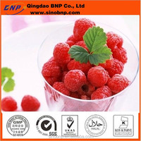 BNP Sells High Quality pure nature bilberry extract