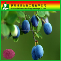 Blueberry Extract/Bilberry Extract Anthocyanidins 5%-25% by UV