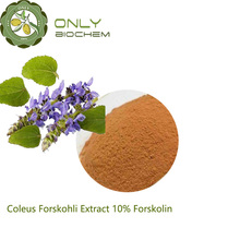 GMP Supplier Coleus Forskohli Extract/Forskohlin Powder/Treat Convulsion Plant Extract