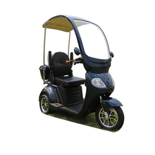 Good Supplier 3 Wheels Scooter Electric Tricycle