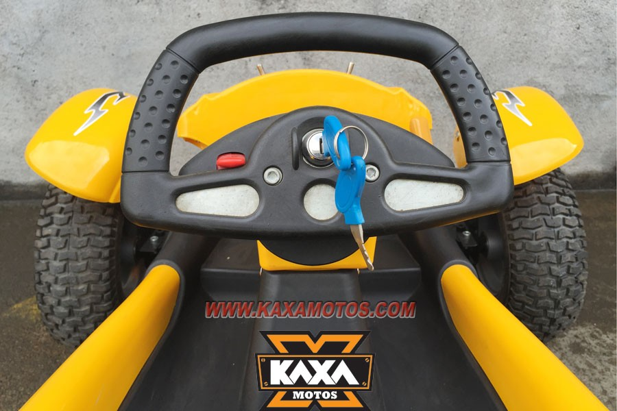 200W Electric Go Kart for Kids