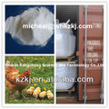 mdcp animal feed additives