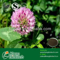 Natural Red Clover Extract Powder,improving osteoporosis