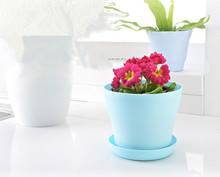 Kailai round miniature flower pot