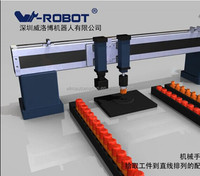 Automatic feeding machine--W-robot robotic arms