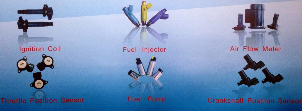 Fuel Injector/Nozzle 0280150943