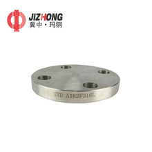 Stainless steel flange paddle blind pipe fittings with tapped hole
