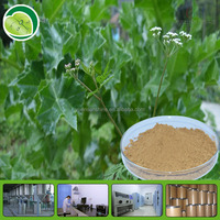 Chinese herbal extract fructus cnidii extract powder.