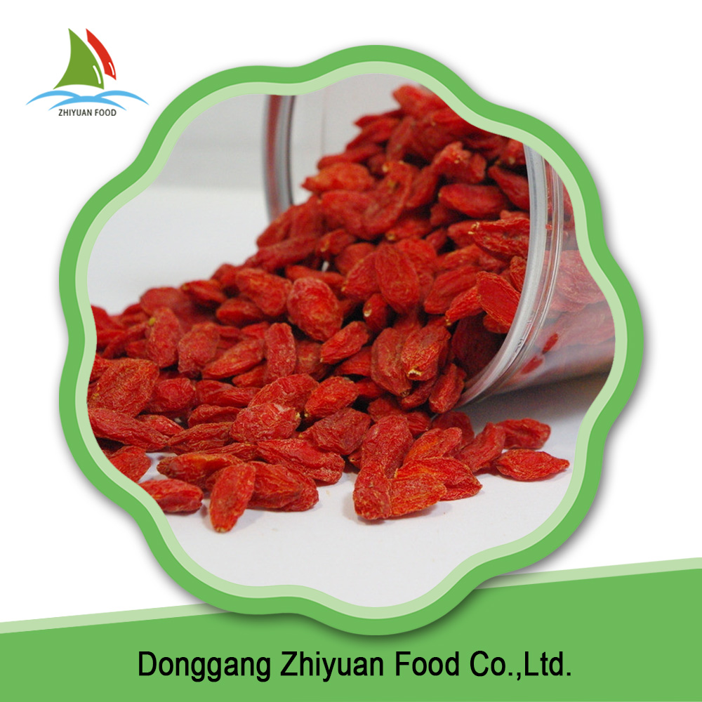 High quality dried organic goji berry from China