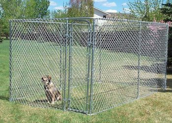 iron wire dog kennel