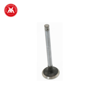 Weltake WMM Auto Parts Valve for P 31431261 with Good Quality and Low Price