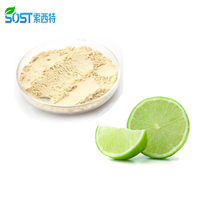 Beverage Store Fruit Flavor Powder Freeze Dried Lemon Flavor Powder