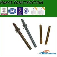 Horse 20mm diameter anchor bolt