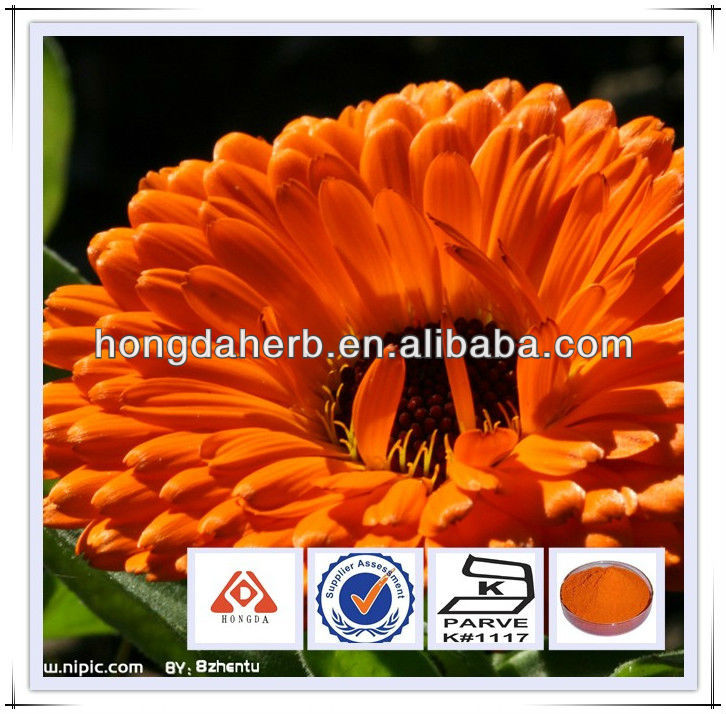 Pure and Natural Marigold extract