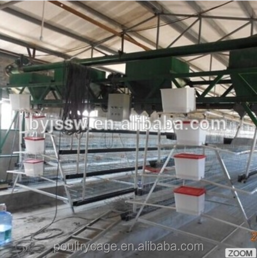 Chicken Egg Poultry Farm Automatic Feeding Equipment For Sale