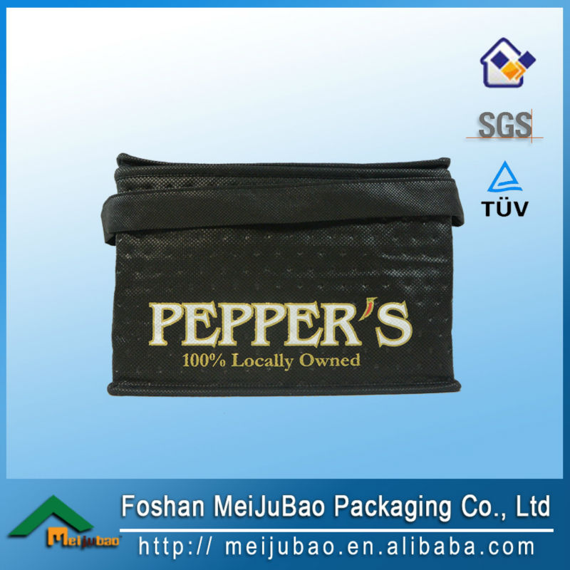 thermo disposable ice cooler bag