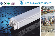 dlc double sided cooler 5ft led tube ip65 with external driver 5 year warranty