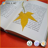 Famous Supplier Billie Islamic Soft Book