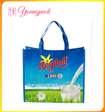 High Quality Eco-friendly PP Woven Shopping Bag with Zipper