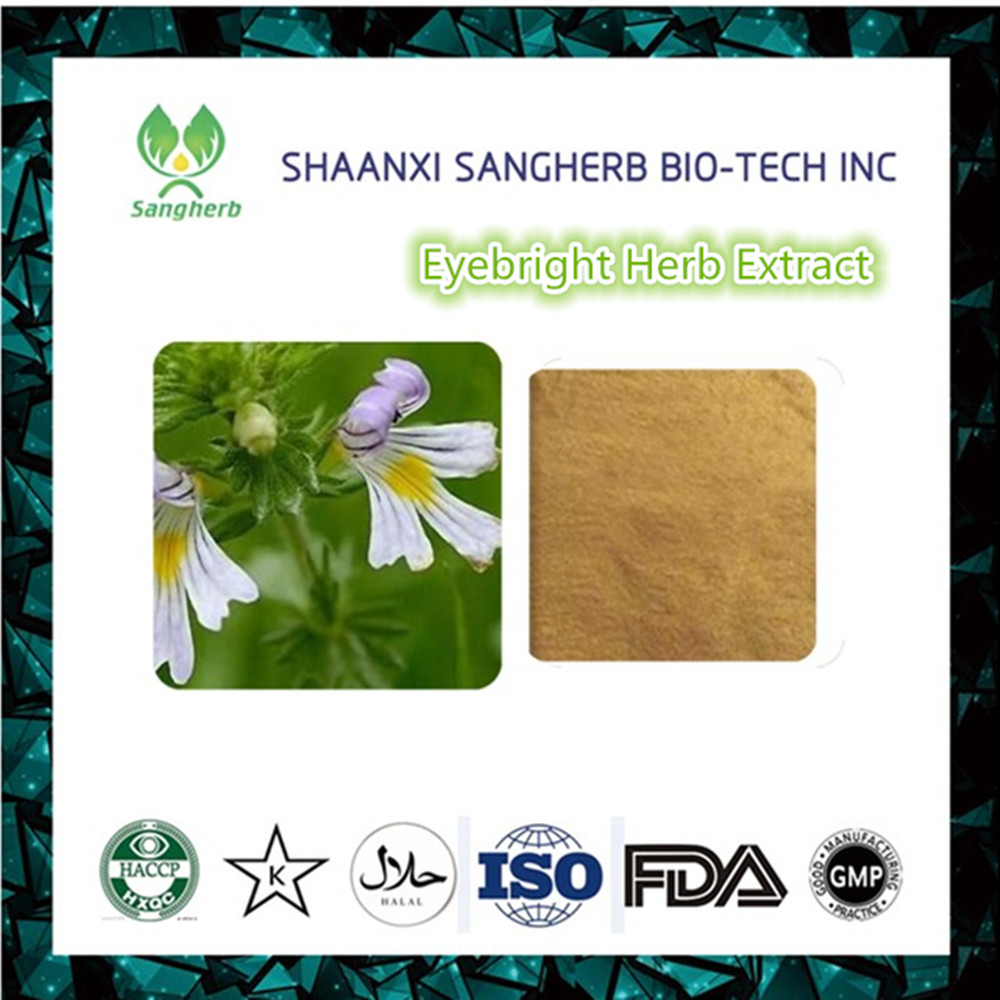 Top quality eyebright leaf extract 3% flavones Euphrasia officinalis extract