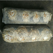 Low Price Spawn Logs of Shiitake Mushroom,Mushroom Logs For Sale