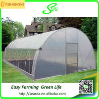 Hot sale poly green house india
