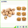 Chinese walnuts for sale/shelled walnuts / walnut logs for sale