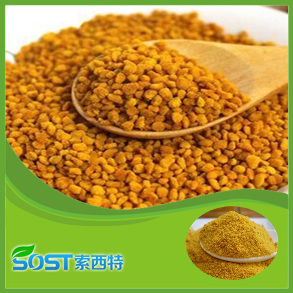 Natural Promoting testosterone Bee pollen granules for healthcare