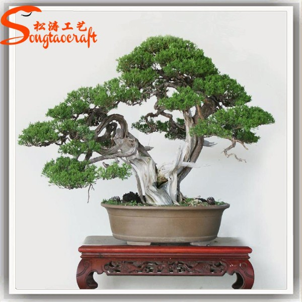 New products bonsai pine tree price artificial japanese artificial bonsai tree