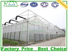 tunnel green house greenhouses for mushroom agriculture vegetable greenhouse