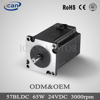 Good quality electric vehicle brushless dc motor 24V 50w