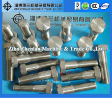 factory production standard hex stainless steel 309S bolts and nuts