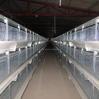 stacked colony cages 3 to 4 tiers for broiler chicken