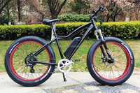 Off-road electric mountain bike 48v 750w/1000w with fat tyre