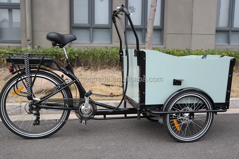 2017 3 wheel electric cargo bike tricycle for family UB9019E