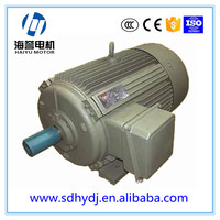 Y2 series three-phase Low Voltage High Output electric motors (H400-500)